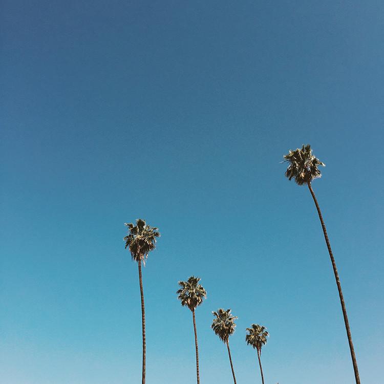 photo journal // LA www.jojotastic.com