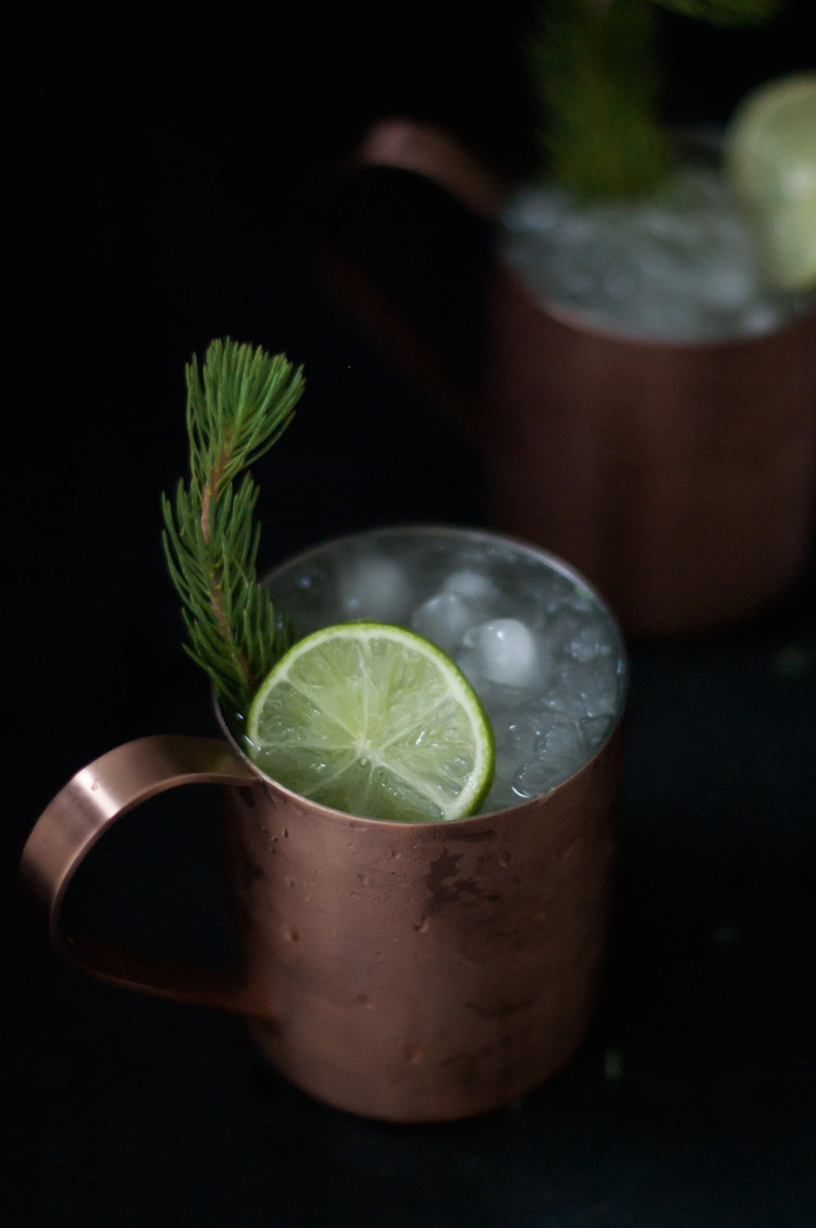 Portrait of a Cocktail // Alpine Buck // Jojotastic.com