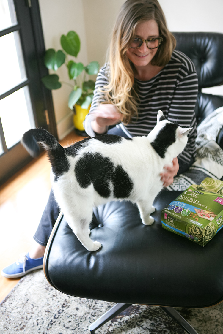 TODAY ON THE BLOG: I'm waxing poetic about how my cat completes me + sharing all the details of the @Purina Nutrition to Build Better Lives program. During the month of July, for every bag of Purina Cat Chow you purchase for your cat, a meal will be donated to a cat in need. Their goal is to donate 5 million meals from July 1 through July 31! Find out more on Jojotastic.com #CatChowCares #ad