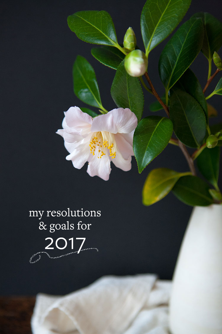 Happy new year! It's time to set some goals and declare my resolutions for 2017, both for my small business and personal goals. Find out my resolutions and get inspired on Jojotastic.com