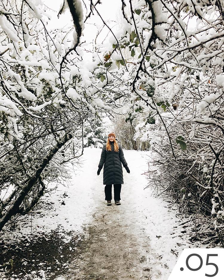 snowy seattle, adventuring in the snow. winter landscape. winterscape.