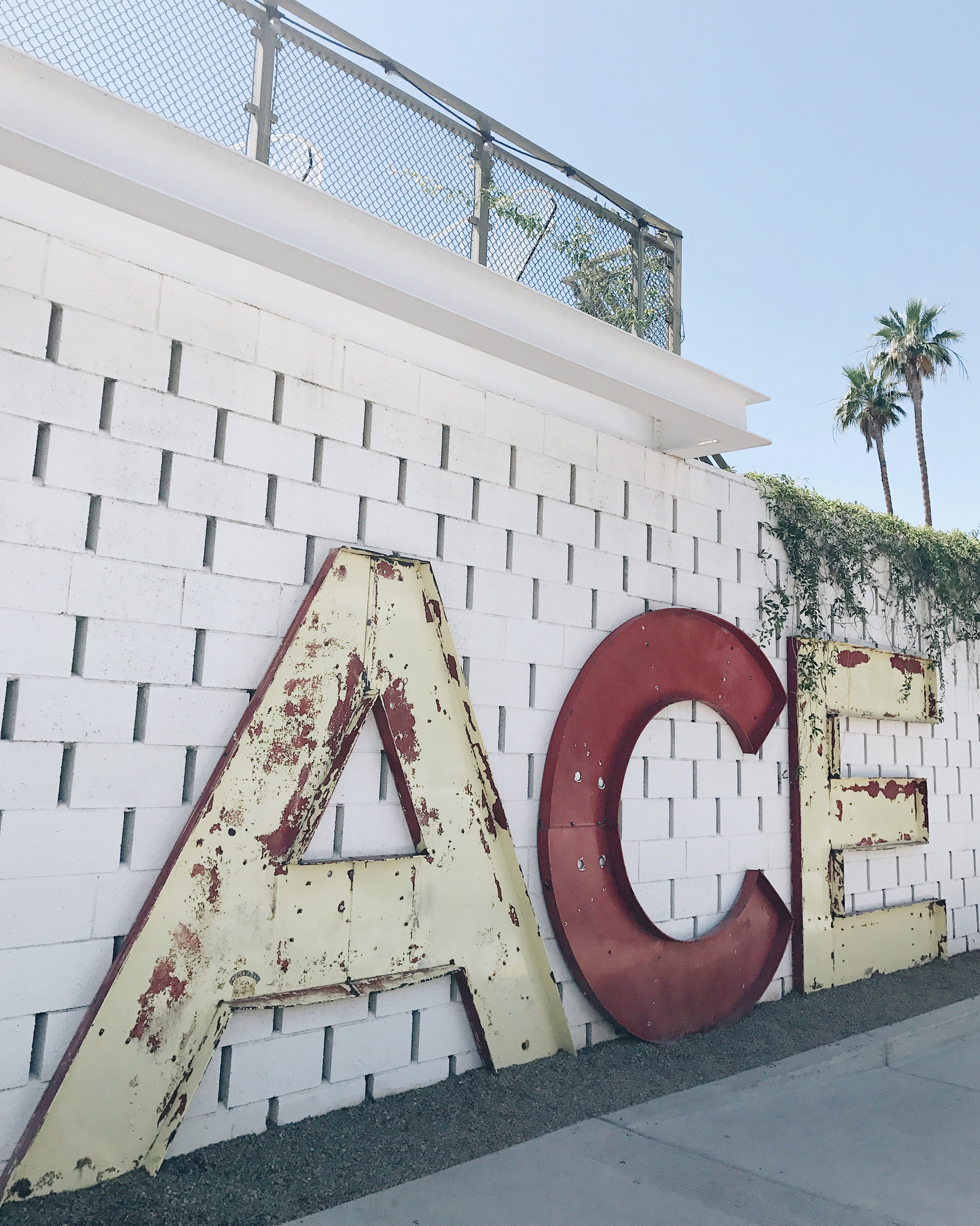 jojotastic travel guide and visual diary for palm springs. the ace hotel