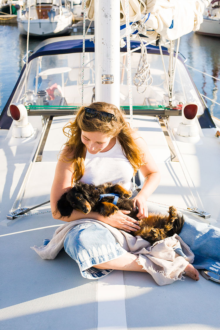 summer sailing adventures with our wiener dogs. find out more on jojotastic.com! #ad #akibbleabove #stellaandchewys