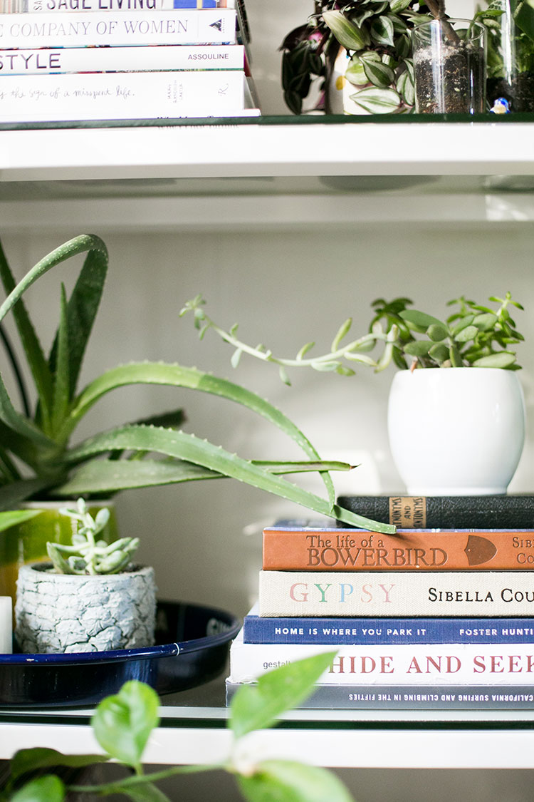 My Essential Coffee Table Books To Style The Perfect Shelfie