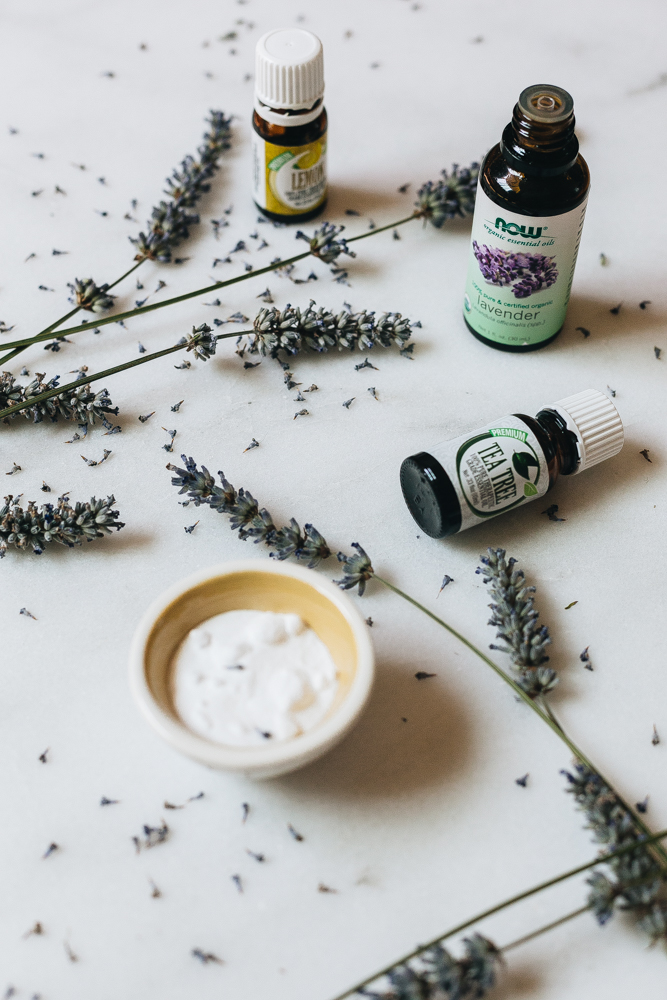 Essential Oils that Act as Spider Repellent