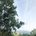 Travel Guide for Tuscany in Northern Italy including what to see, where to eat, and where to stay and tips for the beach town Forte dei Marmi. #tuscany #travelguide #italy #wanderlust #fortedeimarmi #northernitaly #tuscan #tuscantitaly