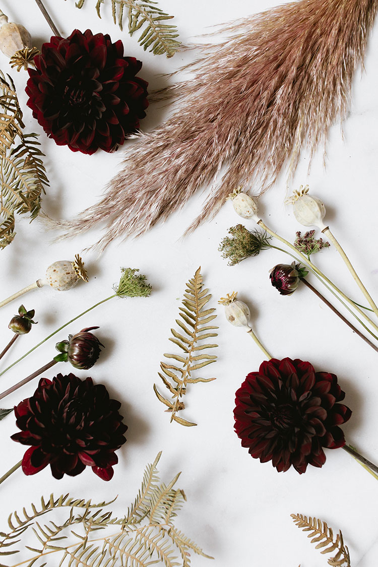 A Dark & Moody Halloween Centerpiece DIY for a grown up or adult dinner party for Halloween or Thanksgiving, made with pampas grass, burgundy dahlias, poppy pods and more. #floralarrangement #grownuphalloween #adulthalloween #halloween #floralDIY #DIY #pampasgrass #driedflowers #ferns