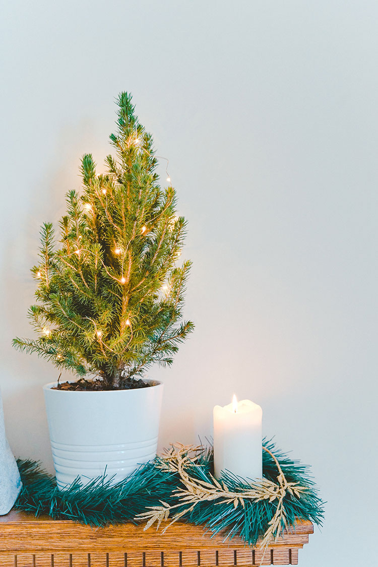 How to Reduce Waste During the Holidays #greenliving #eco #smallspaces #sustainableliving #sustainable #sustainability #sustainablechristmas #holidays #christmas #wastefree