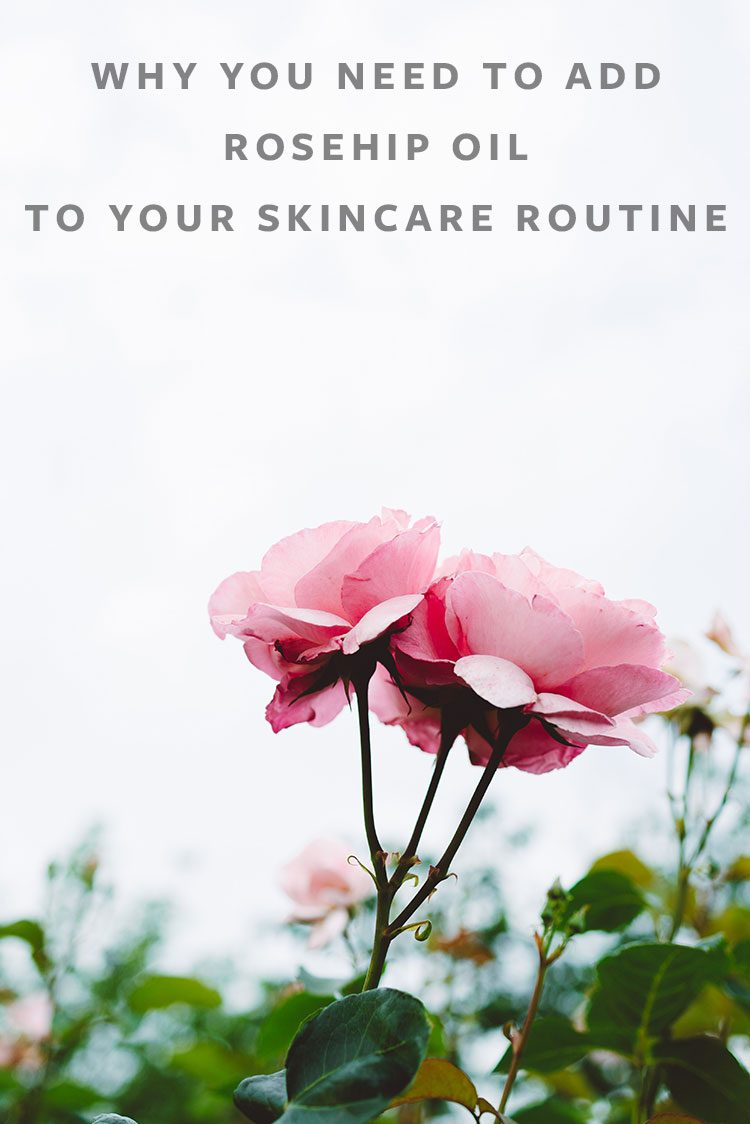Rosehip Oil, My New Favorite Skincare Ingredient! How to use rosehip oil, the benefits of rose hip oil in skincare.  Weekend wellness tips on jojotastic.com #skincare #naturalskincare #organicbeauty #naturalbeauty #wellness #rosehipoil