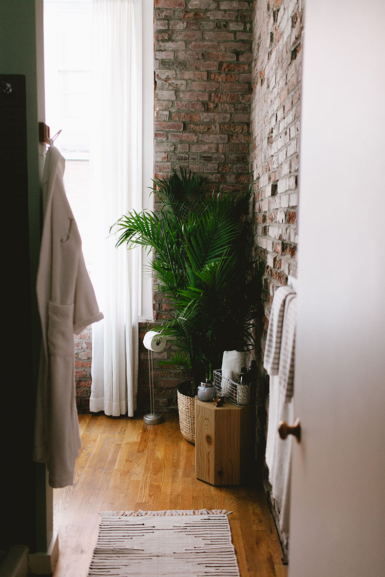 How To Decorate With Large Indoor Plants In A Small Space Jojotastic