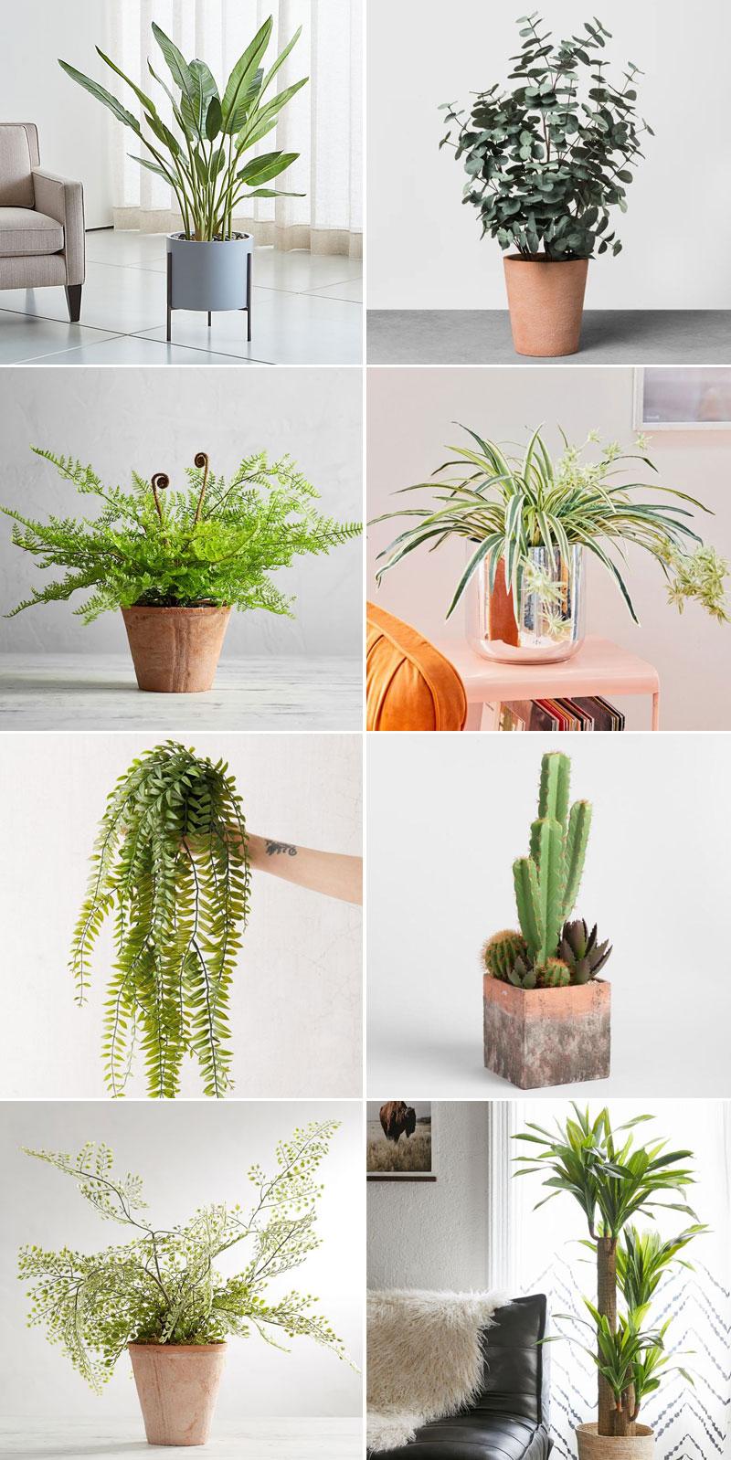 OMG... These Faux Indoor Plants are Shockingly Good & Convincing #plants #houseplants #lowlightplants #indoorgardening #smallspaces #tipsandtricks #tinyhome #decoratingwithplants #fauxplants #fakeplants #fakeindoorplants #fauxindoorplants