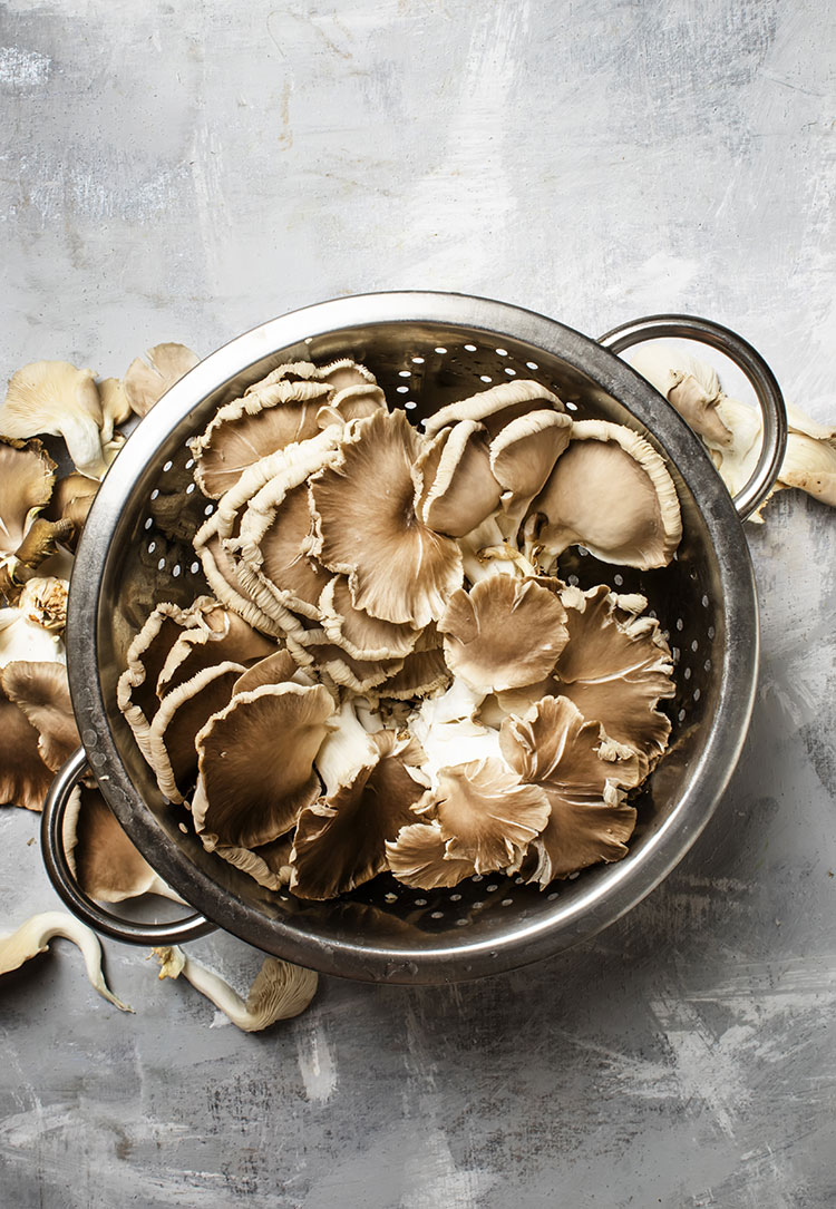 All about adaptogens and the benefits of adaptogens for adrenal fatique! #wellness #selfcare #adaptogens
