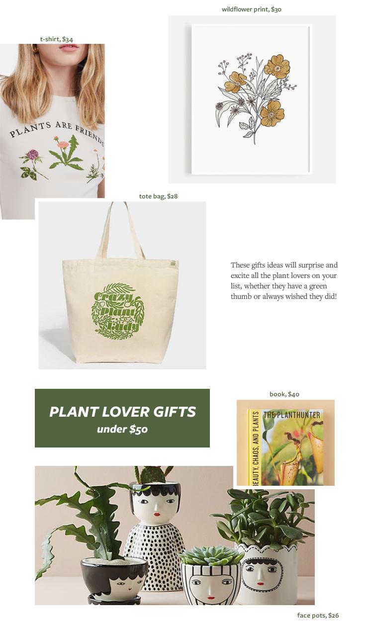 Plant Lover Gift Ideas, Gift Guide for Christmas & Holidays 2019 via jojotastic.com #giftguide #giftidea #giftgiving #gifts #presents #christmaspresents #christmasgiftideas #christmasgift #plantlady #plants #plantlover
