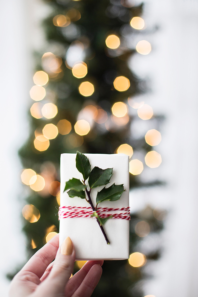 Plant Lover Gift Ideas, Gift Guide for Christmas & Holidays 2019 via jojotastic.com #giftguide #giftidea #giftgiving #gifts #presents #christmaspresents #christmasgiftideas #christmasgift #plantlady #plants #plantlover