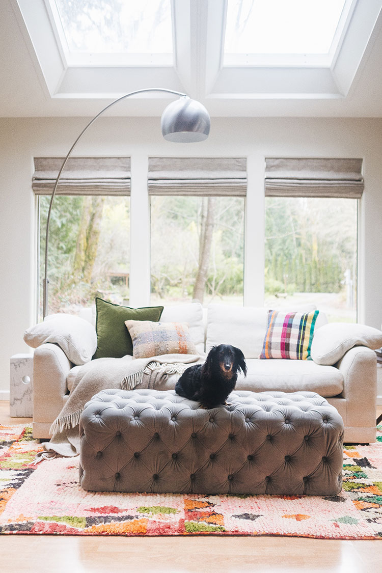 How to keep a white sofa clean with pets. Care instructions for white couch, how to keep white upholstery clean, plus cleaning hacks for fabric and fabric care tips and tricks