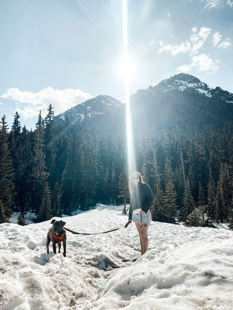 Exploring the North Cascades mountains in Washington state with my blue pitbull, Diamond. A quick life update about my health, our cabin, our pets, my business, and more.