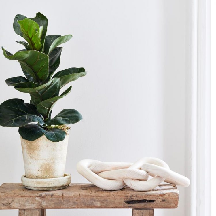 20 Affordable Home Decor Pieces I Swear By (All From My Own Home!), under $100